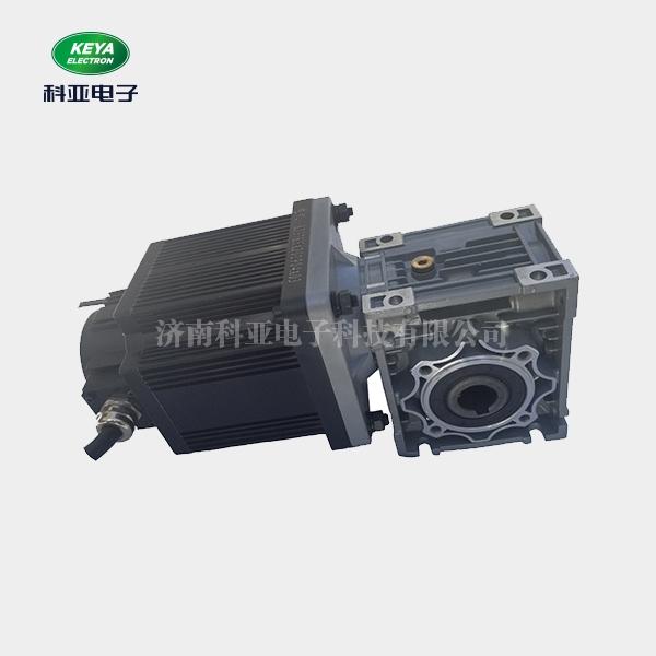 低压伺服厂家  直流无刷电机 原装正品