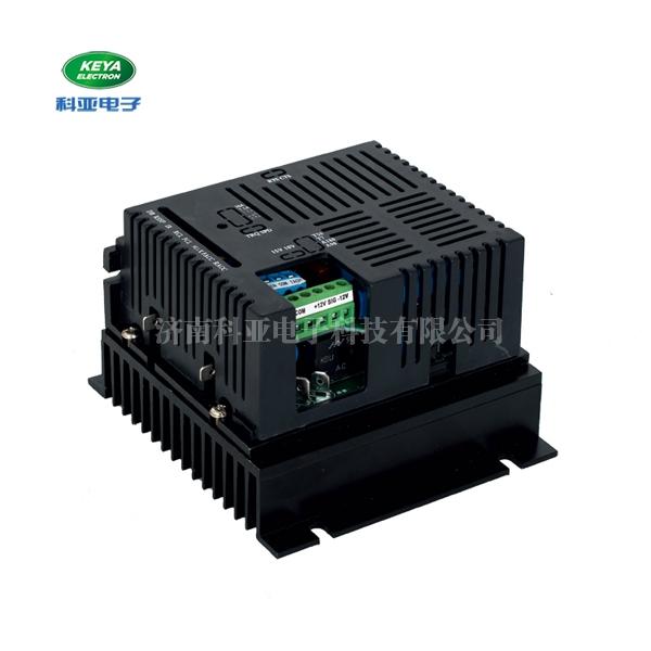 深圳可逆直流调速器115/230RT10AL
